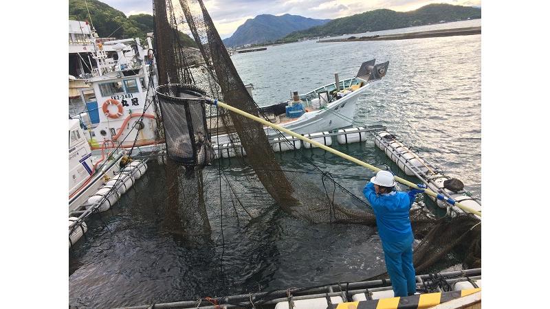 福井中央魚市株式会社