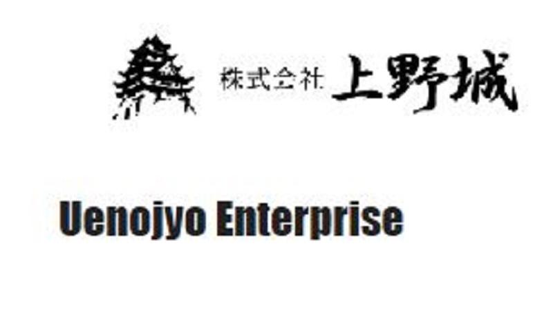 株式会社上野城