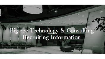 株式会社ビッグツリーテクノロジー&コンサルティング